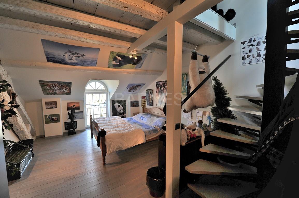 Dans un château au coeur de Chambéry, appartement exceptionnel de type 7 en duplex picture 3