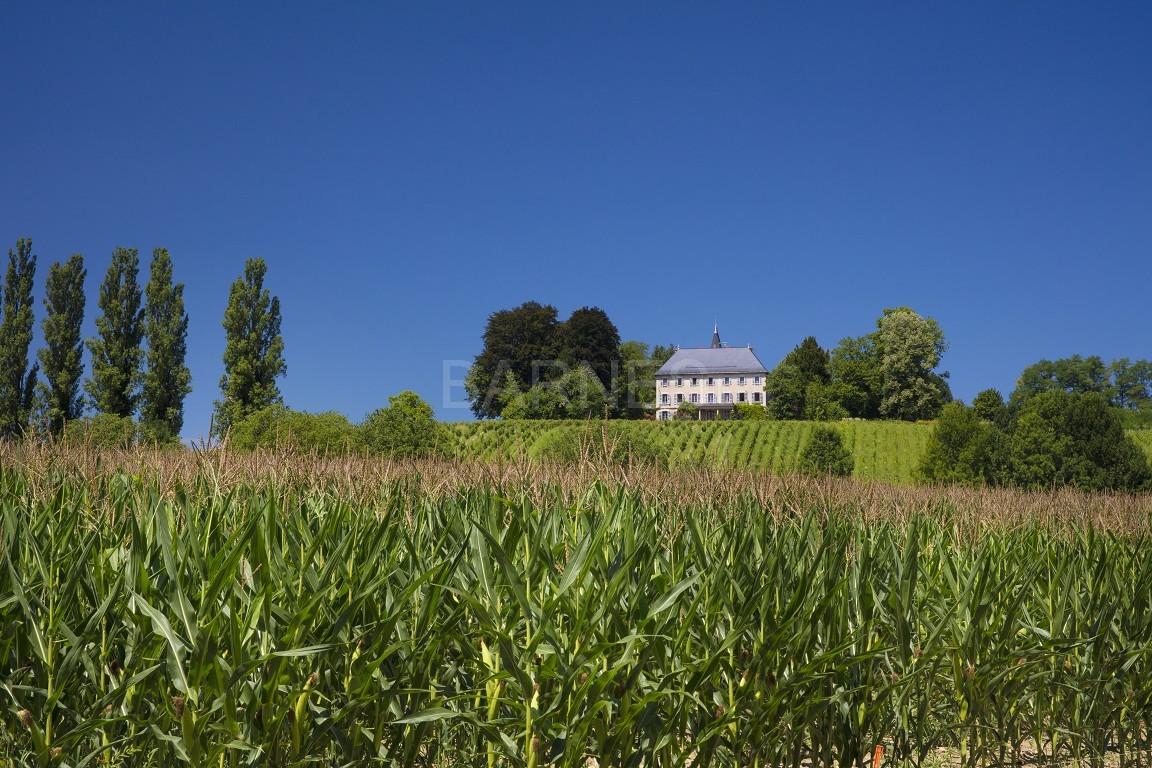 Superbe propriété viticole du XIX ième bénéficiant d'une belle vue sur la chaîne de Belledonne. picture 2
