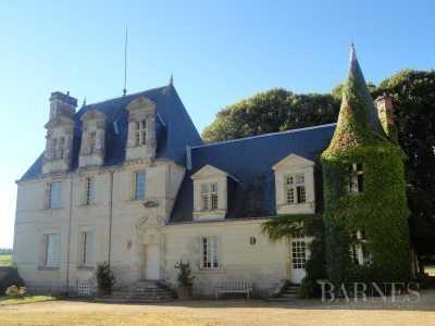 Propriété viticole, Tours - Ref 2554381