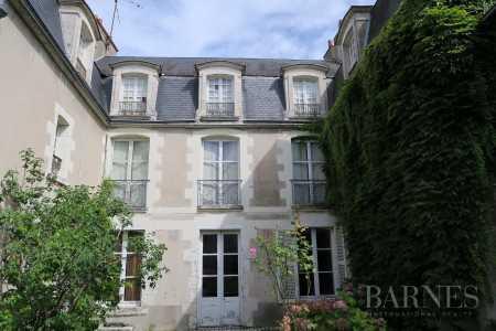 CHATEAU, Blois - Ref 2554038
