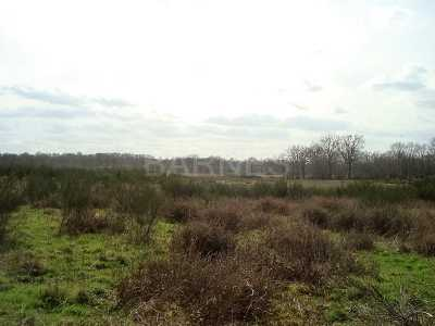 Hunting property, LIMOGES - Ref CH-67388