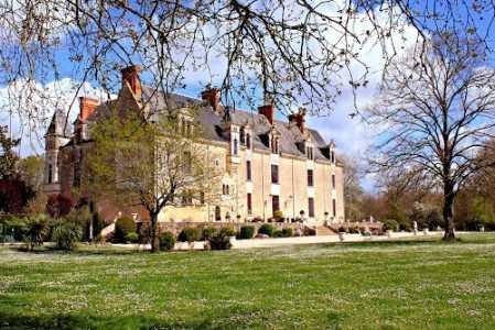 Châteaux, LA ROCHE SUR YON - Ref CH-66161