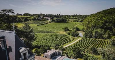 BARNES un acteur majeur des fusions-acquisitions viticoles
