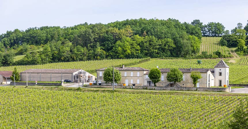 Wine-growing estates: the joy of a life amidst the vines